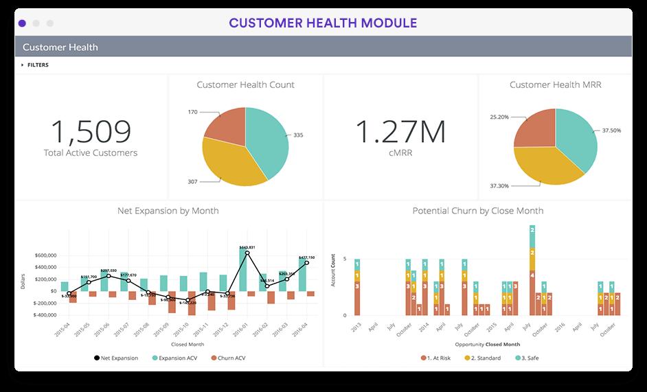 Customer health overview dashboard in Looker screenshot